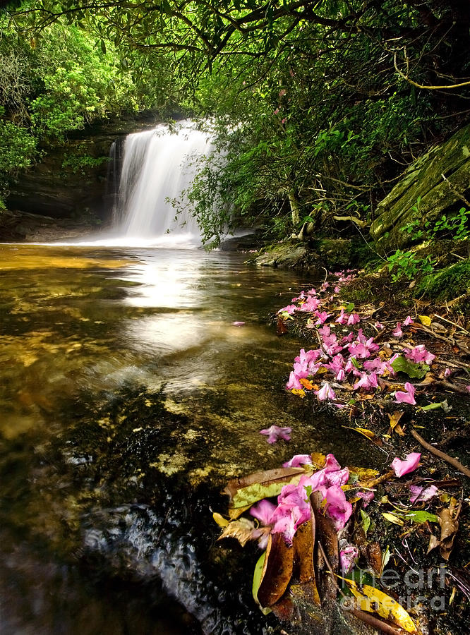 Waterfall Photograph - Window Into Heaven - Panthertown North Carolina by Matt Tilghman