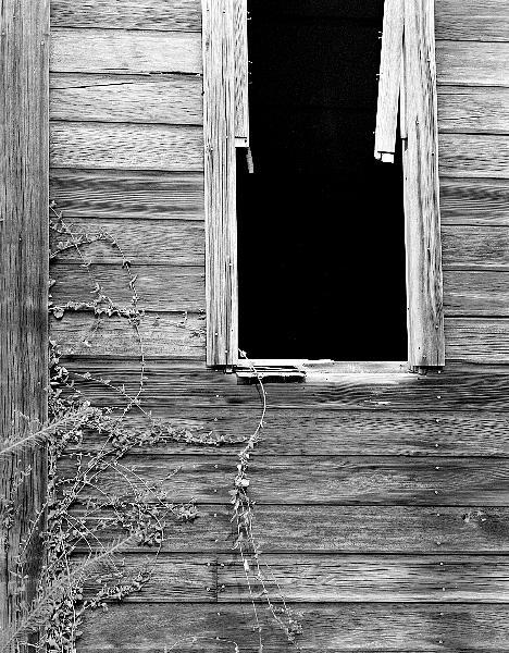 Landscape Photograph - Window by Paul Aiello