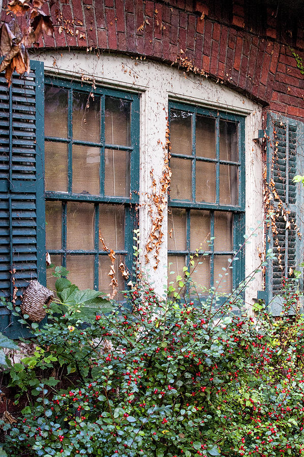 Window Scene by Chita Hunter