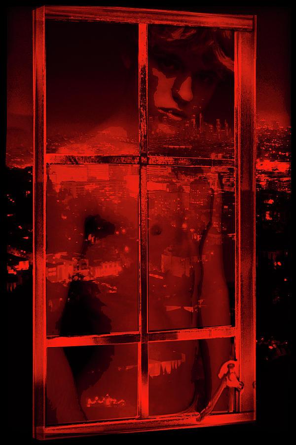 Window Shade 2/10 by John Waiblinger