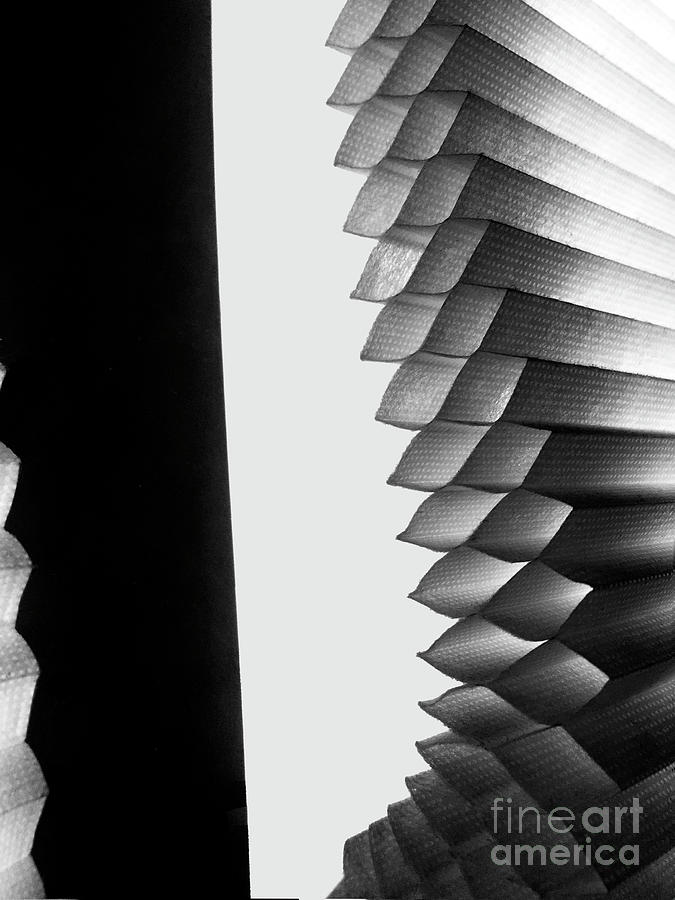 Window Shade 2 by Frank Merrem