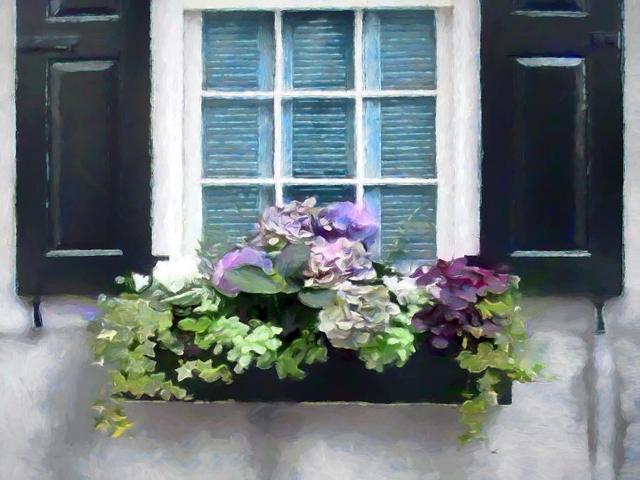 Window Digital Art - Window Shutters And Flowers Vi by Ronald Bolokofsky