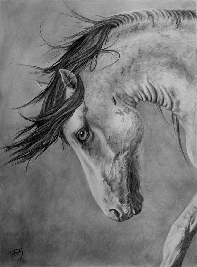 Horse Drawing - Windswept by Daniele Jones