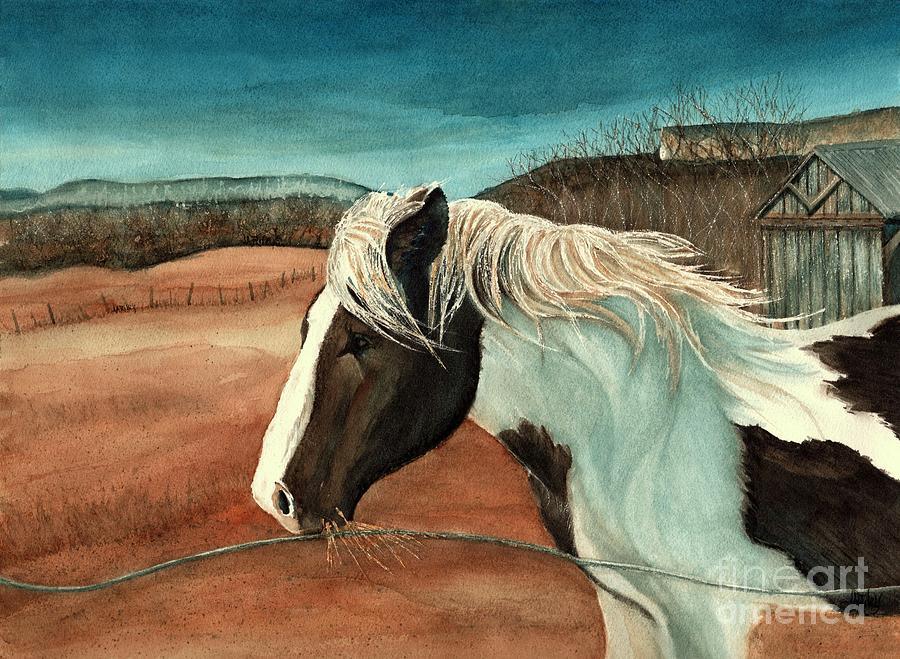 Windswept - Paint horse - Shawangunk by Janine Riley