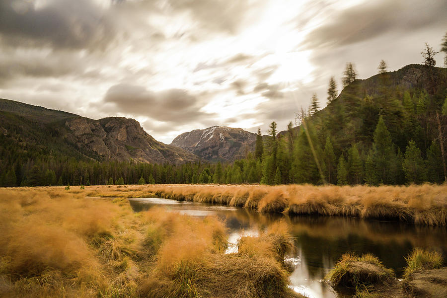 Windy Autumn Day at East Meadow - Colorado Rocky Mountain Nation by Ellie Teramoto