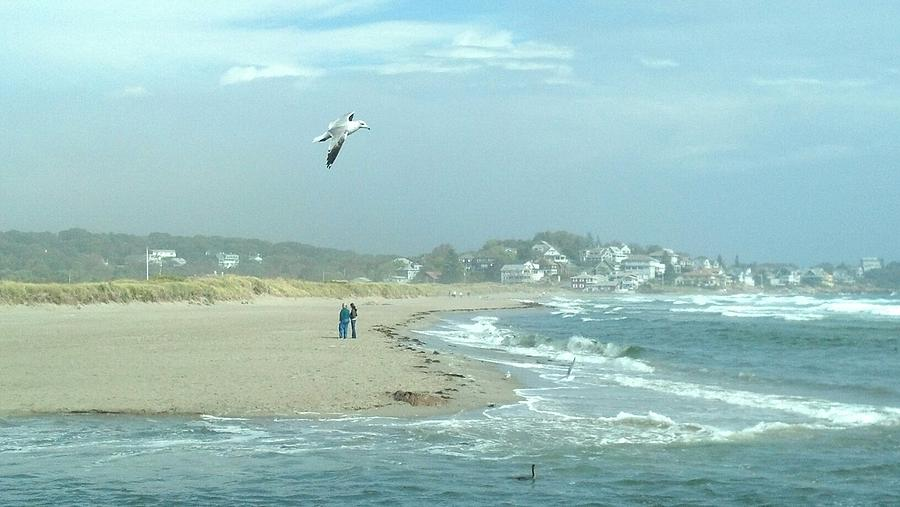 Ocean Photograph - Windy Day At Good Harbor Beach by Harriet Harding