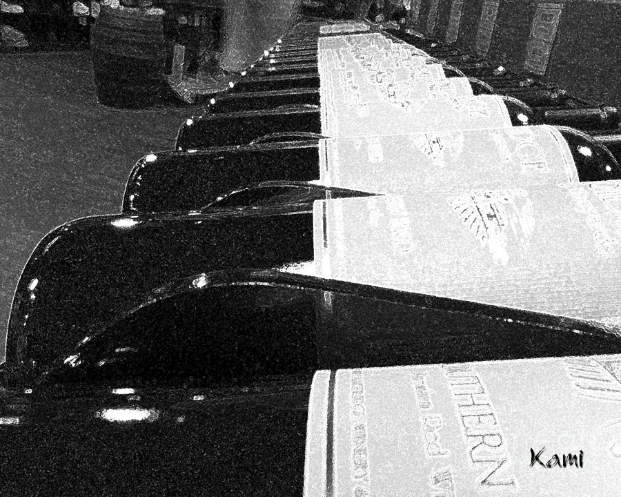 Wine Bottles a Row by Kami Catherman