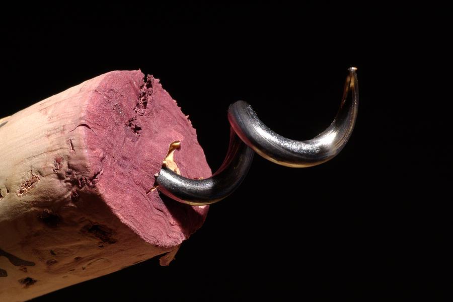 Wine Photograph - Wine Cork And Cork Screw by Frank Tschakert