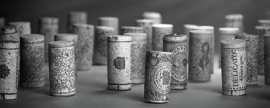 Bottle Stopper Photograph - Wine Cork Panorama in Black and White by Tom Mc Nemar