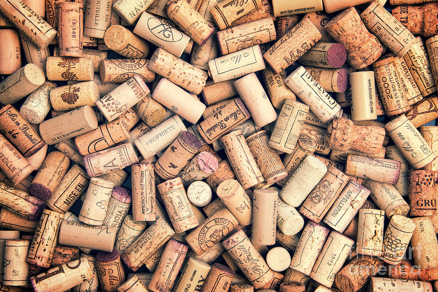 Wine Photograph - Wine Corks by Delphimages Photo Creations