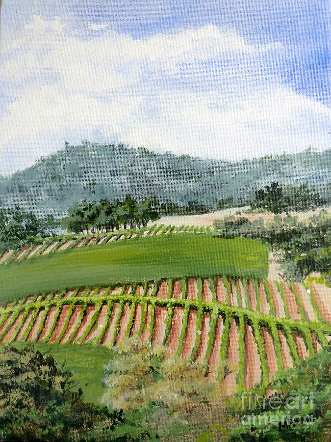 Wine Country by Mary Palmer