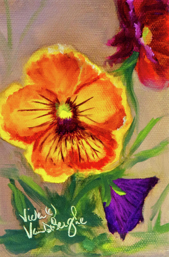 Seed Packet Painting - Wine Flash Pansies  by Vicki VanDeBerghe