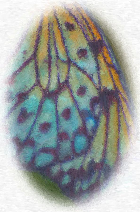 Winged Fluorescence Digital Art by Richard Gordon