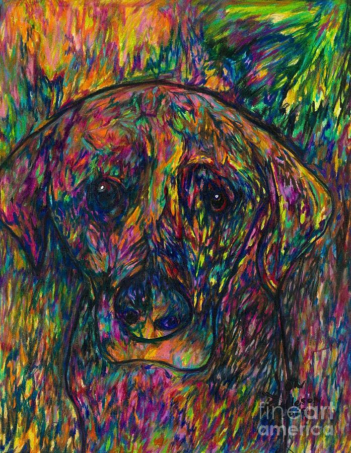 Winnie the dog by Jon Kittleson