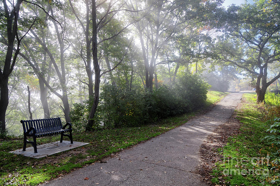 Winona Minnesota Foggy Path with Bench Photograph by Kari Yearous