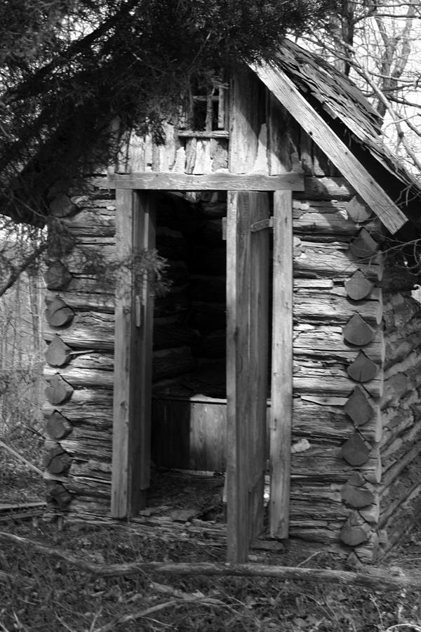Ansel Adams Photograph - Winslow Log Outhouse by Curtis J Neeley Jr