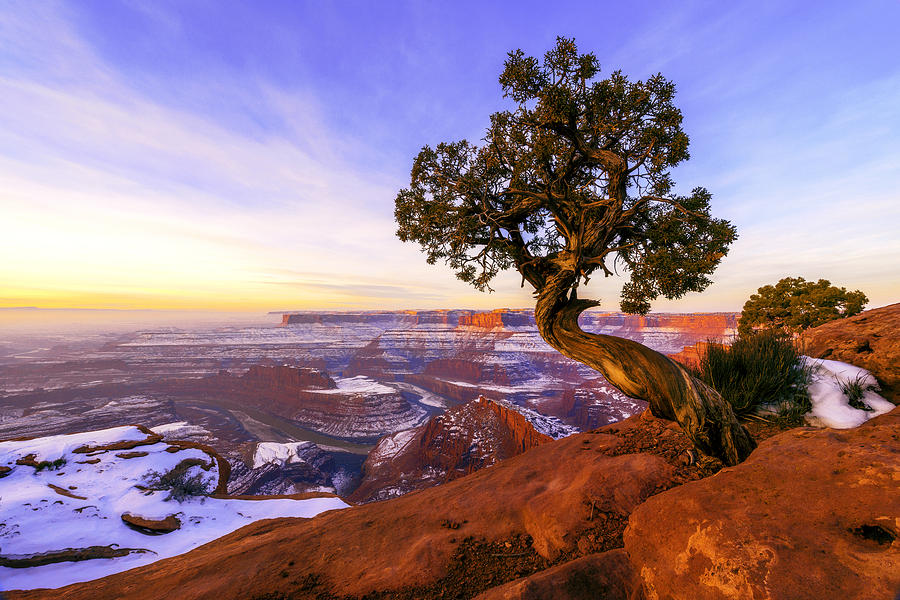 Utah Photograph - Winter at Dead Horse by Chad Dutson