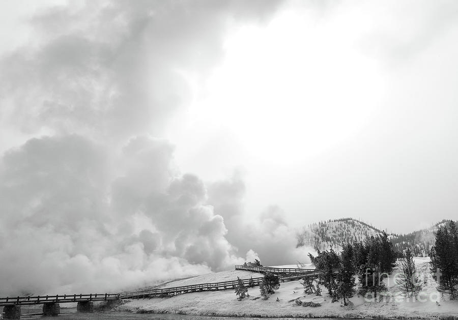 Winter at Midway Geyser Basin by Carol Beverly