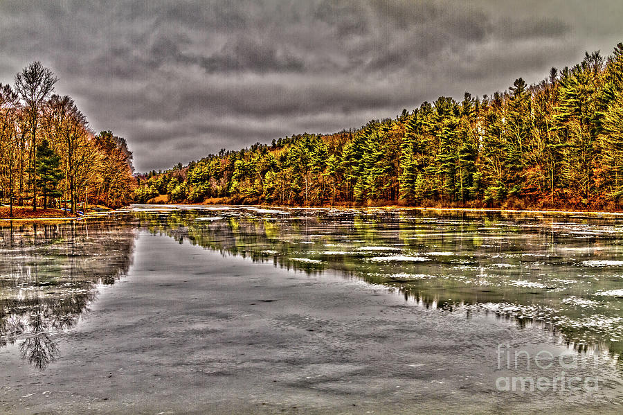 Winter Photograph - Winter At Pine Lake by William Norton