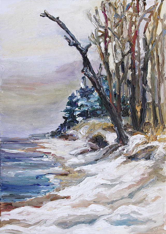 Winter Painting - Winter At The Baltic Sea  by Barbara Pommerenke
