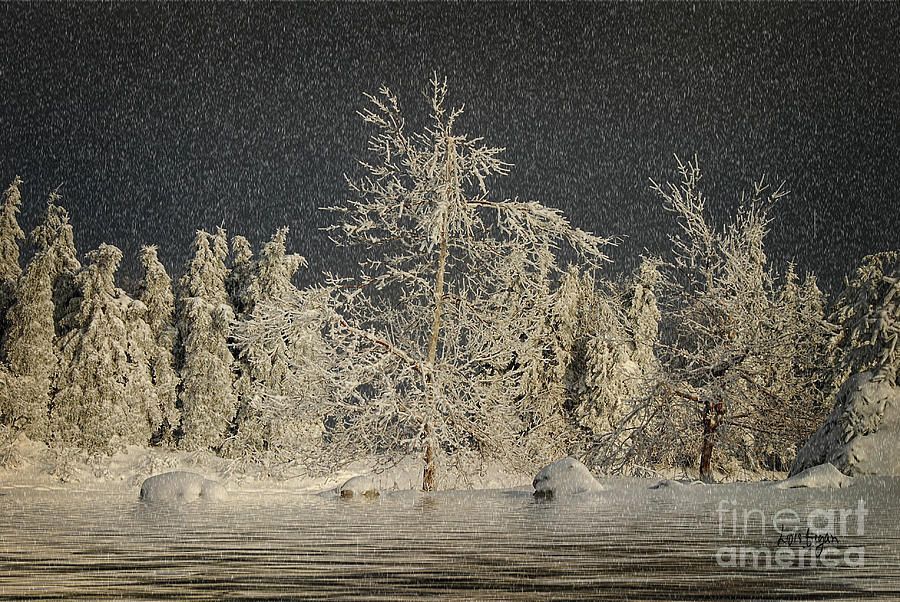 Snow Photograph - Winter Begins by Lois Bryan