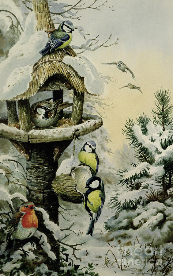 Great Tits Painting - Winter Bird Table With Blue Tits by Carl Donner
