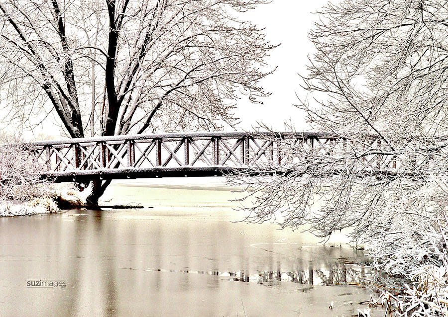 Winter Bridge by Susie Loechler