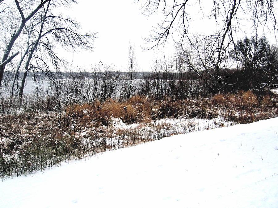 Winter Photograph - Winter By The Lake II by David Ritsema