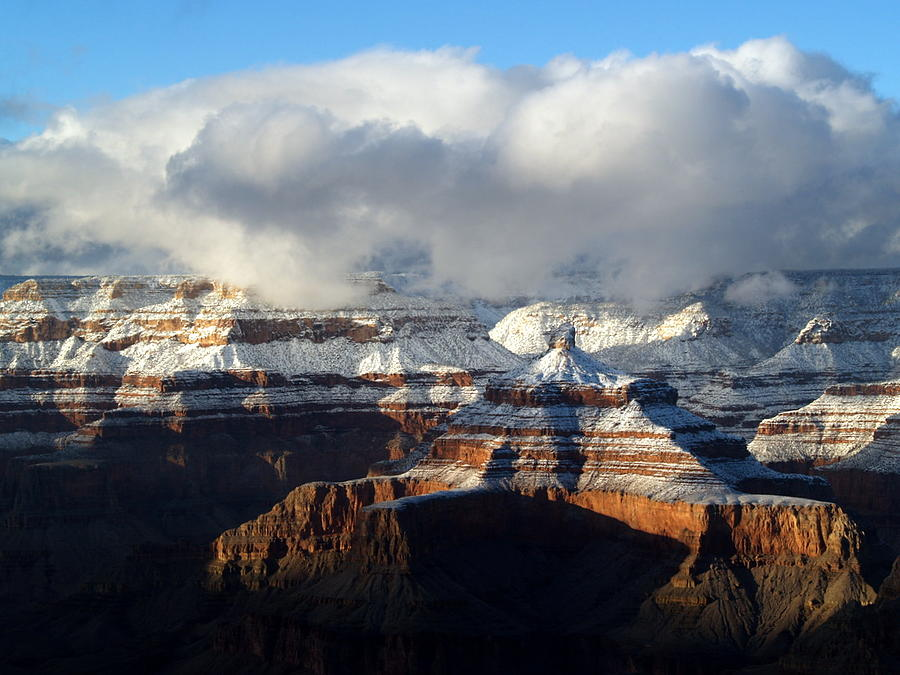 Grand Canyon National Park Photograph - Winter by Carrie Putz