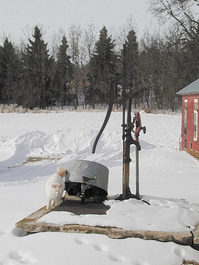 Farm Cat Photograph - Winter Cat At The Pump by Laurie With