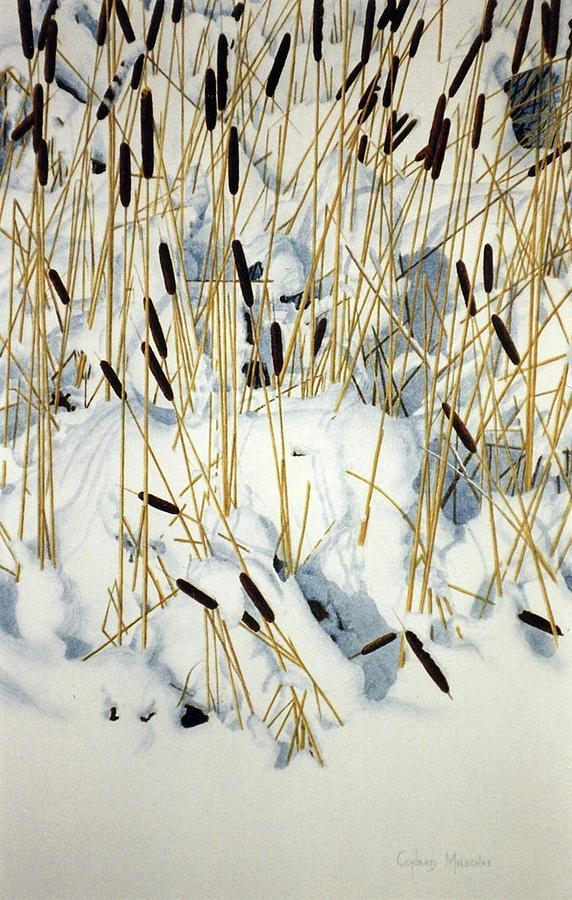 Winter Cattails by Conrad Mieschke