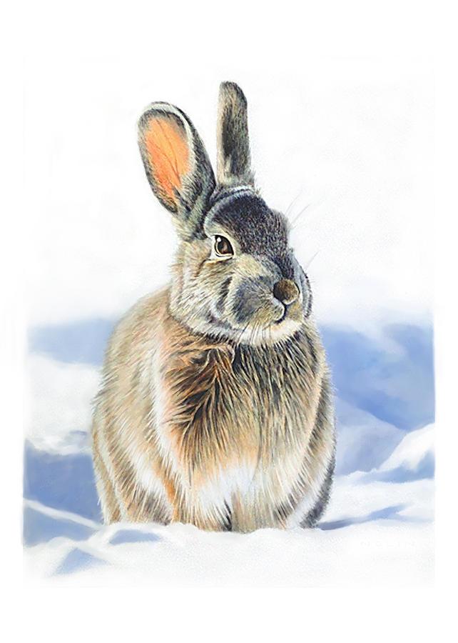 Rabbit Mixed Media - Winter Coat by Bob Nolin