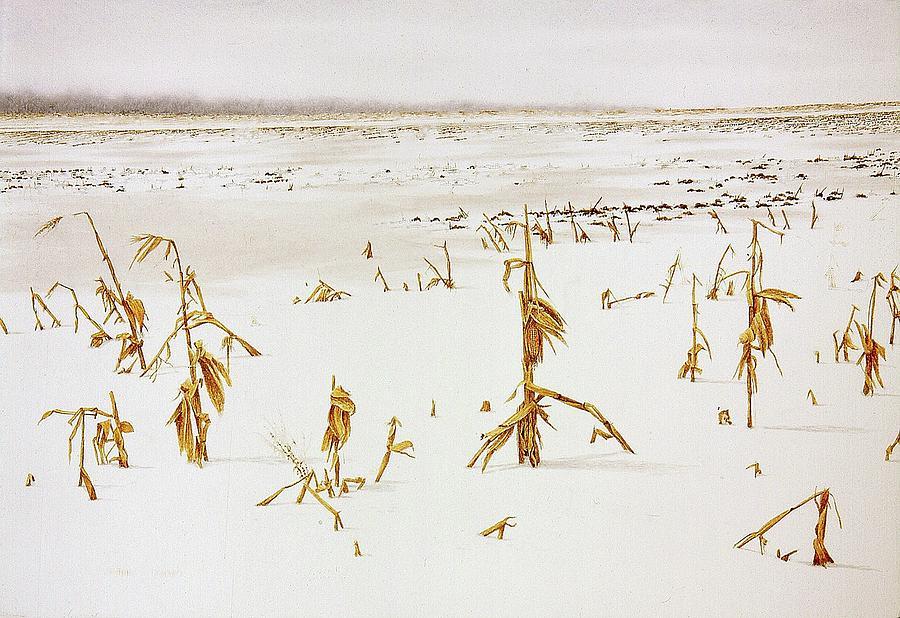 Winter Cornfield by Conrad Mieschke