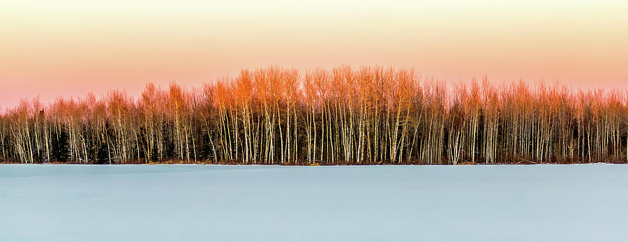 Landscape Photograph - Winter by David Wynia