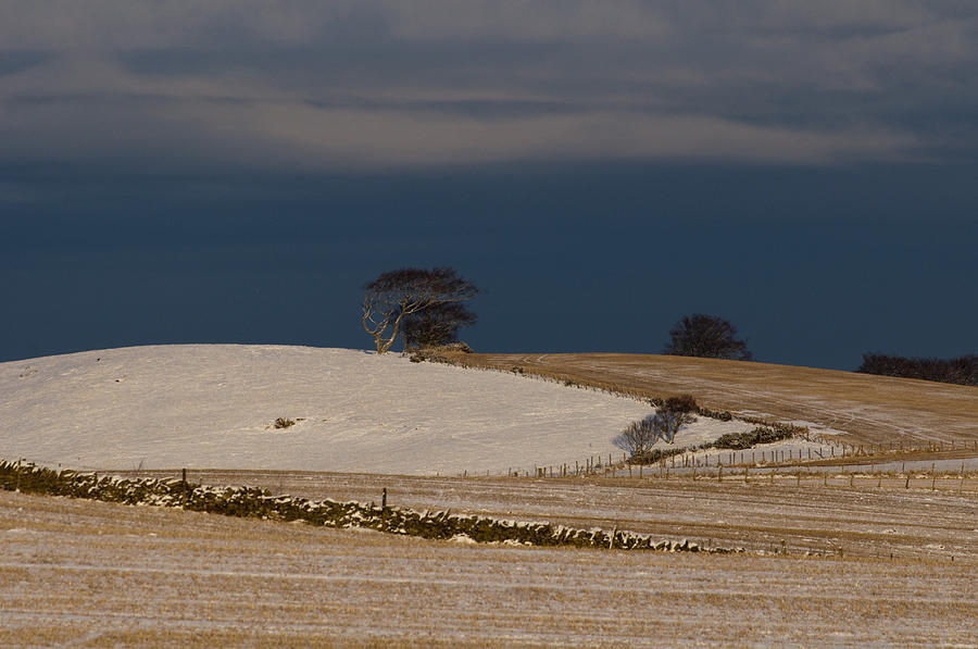 Sky Photograph - Winter Day by Sue Arber