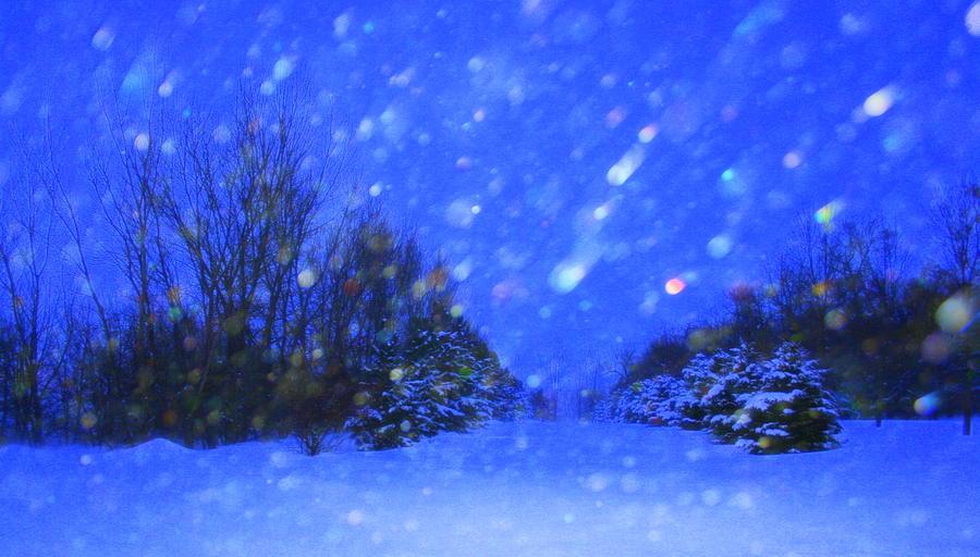 Landscape Photograph - Winter Diamonds by Julie Lueders