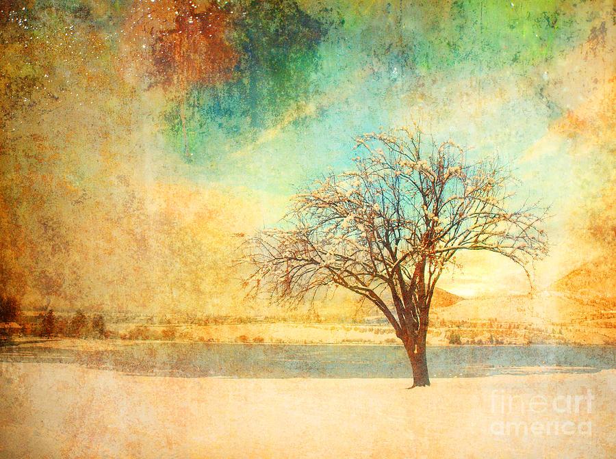 Tree Photograph - Winter Dreams by Tara Turner