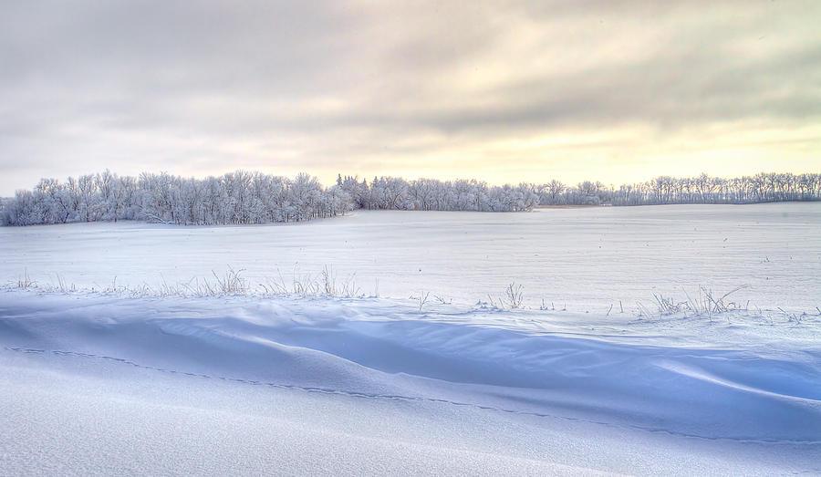 Snow Photograph - Winter Field by David Wynia