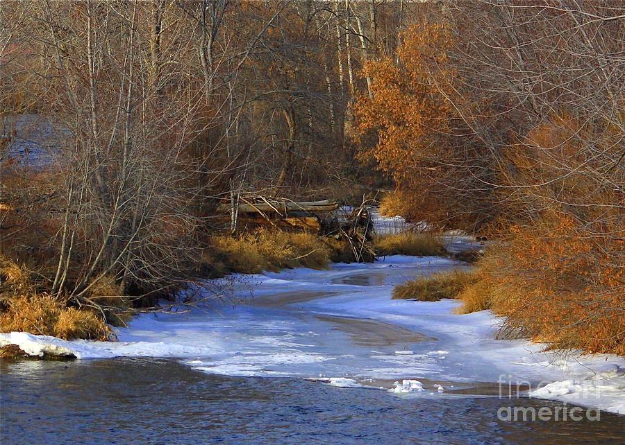 Yakima Photograph - Winter Gold On The Yakima River by Carol Groenen