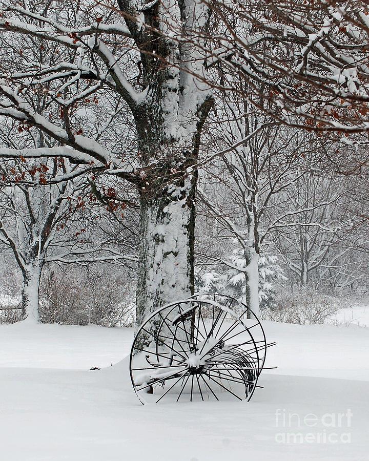 Berry Photograph - Winter Hush by Diane E Berry
