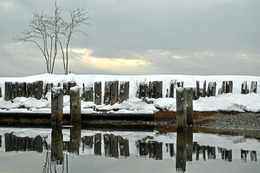 Winter Photograph - Winter In Birch Bay by Matthew Adair