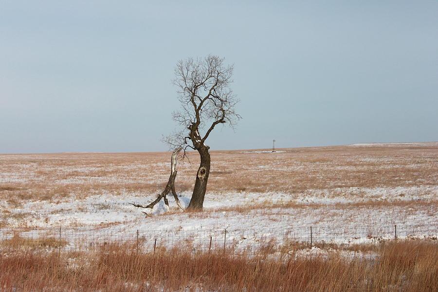 Winter in Kansas by John Moyer