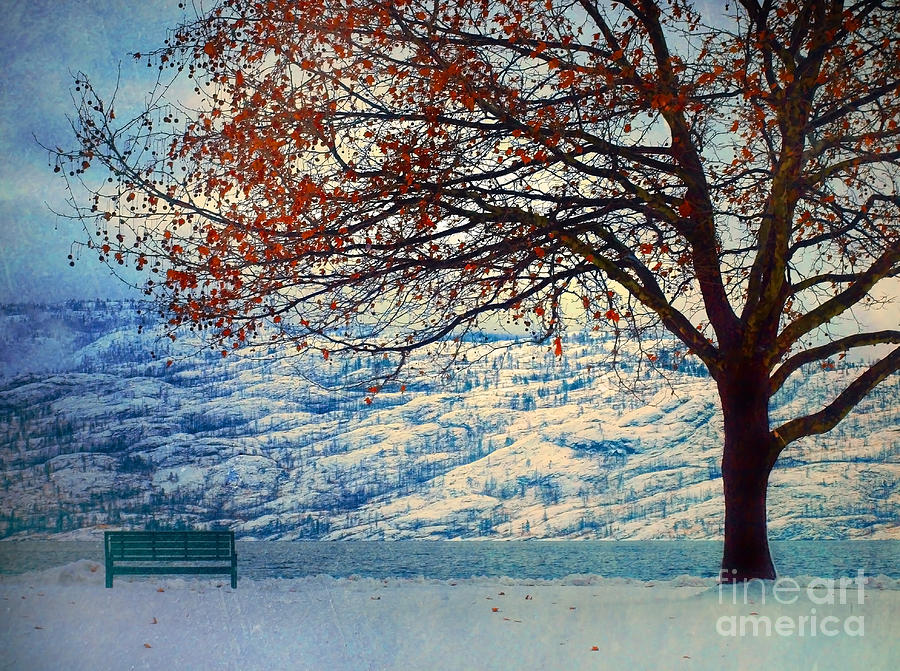 Peachland Photograph - Winter In Peachland by Tara Turner