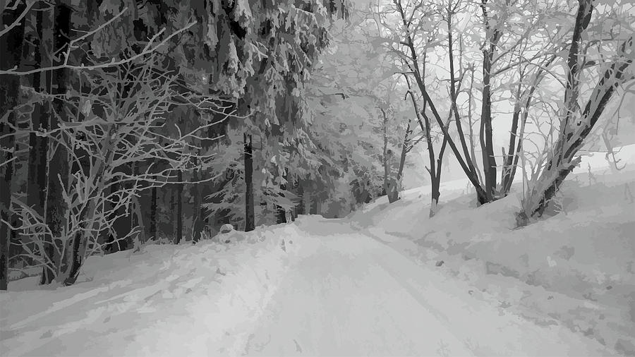 Winter Photograph - Winter In The Woods by Milos Polacek