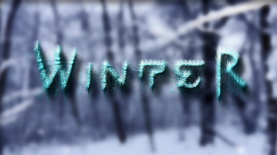 Winter Photograph - Winter by Ivan Gomez