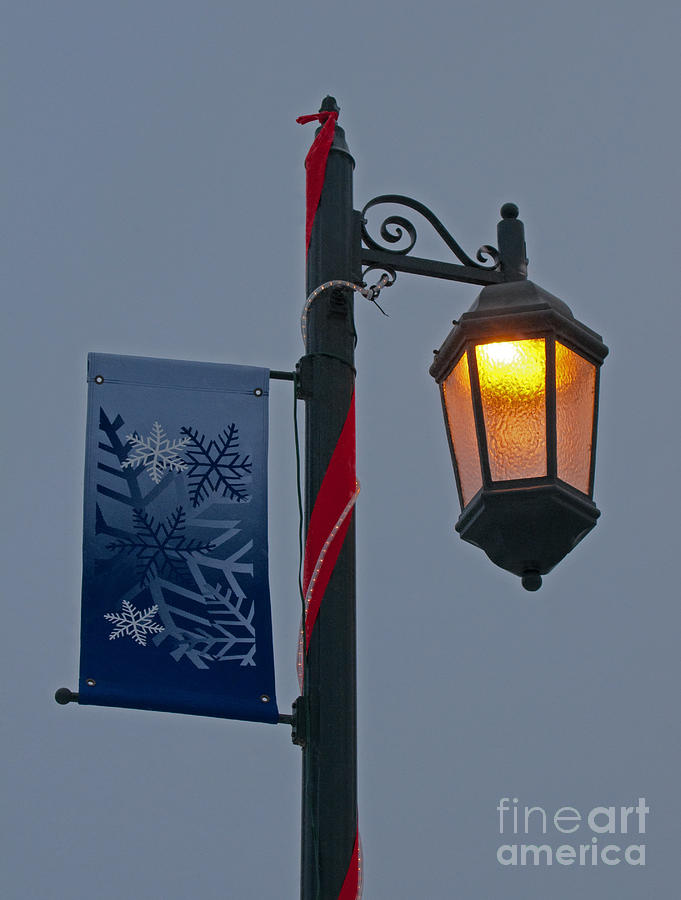 Winter Photograph - Winter Lamppost by Ann Horn