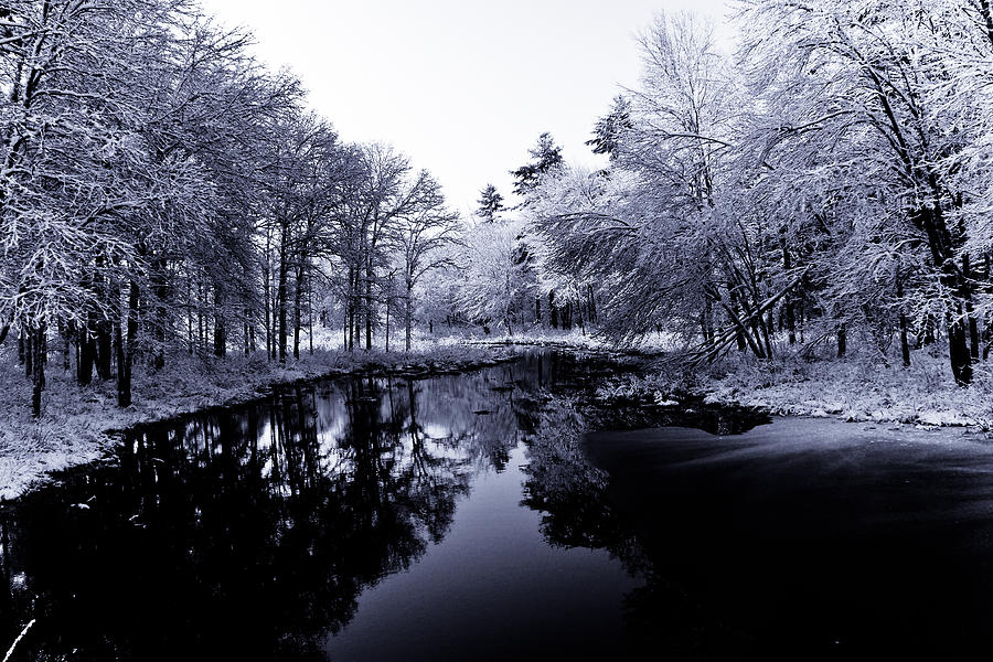 Winter Photograph - Winter Landscape  by Edward Myers
