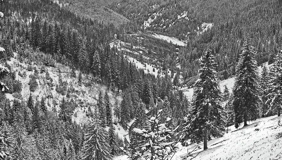 Mountains Photograph - Winter Landscape In Giurgeu Mountains by Gabriela Insuratelu