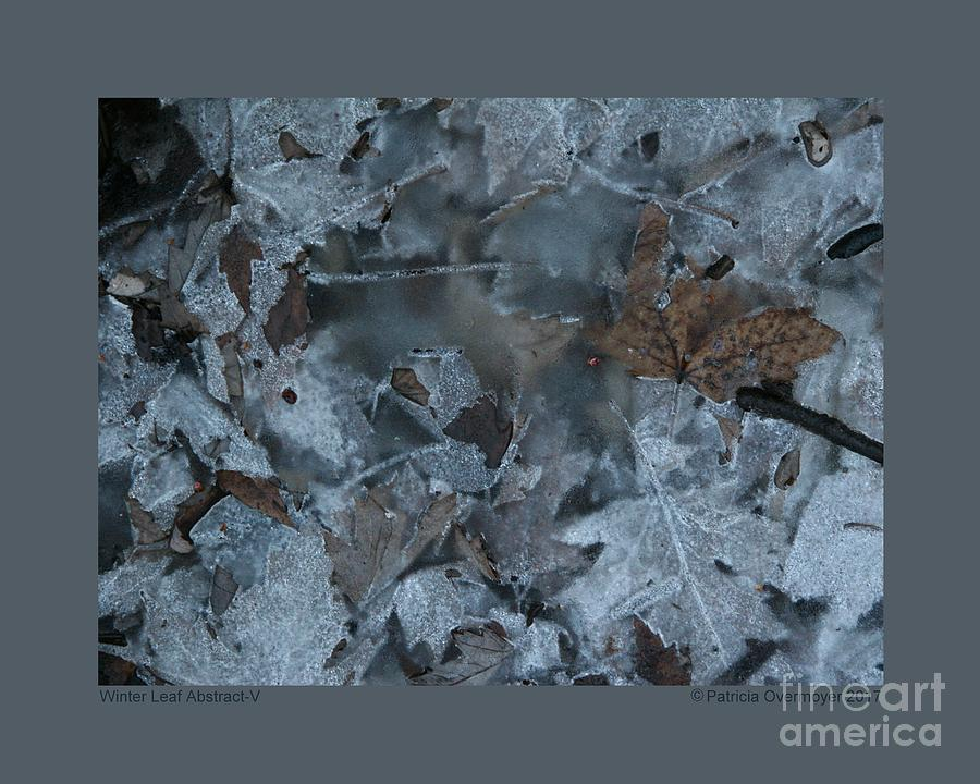 Winter Leaf Abstract-V by Patricia Overmoyer