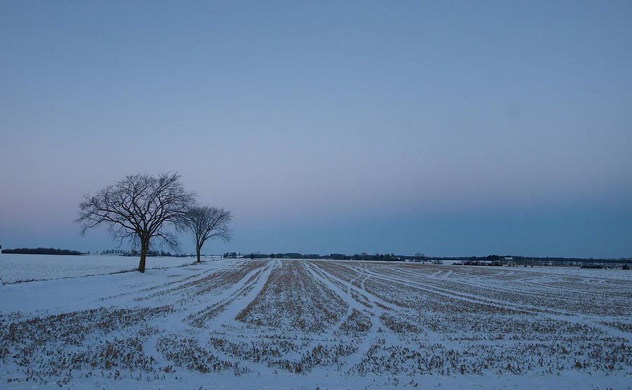 Farm Photograph - Winter Lines by Chesley House